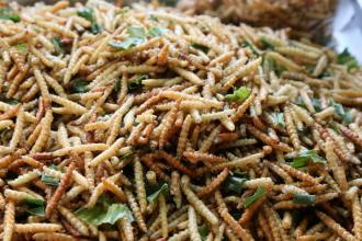 Yummy Insects