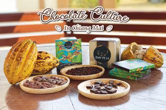 CHOCOLATE CULTURE