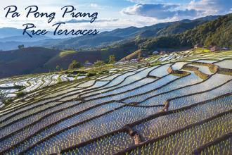 Pa Pong Piang