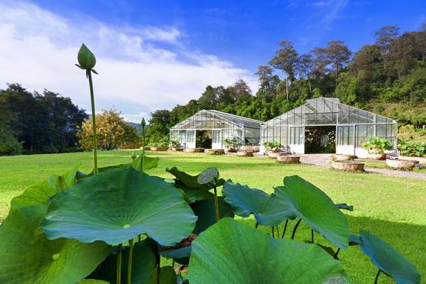 诗丽吉王后植物园的新远足径