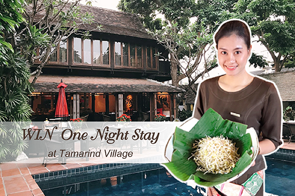 WIN One Night Stay