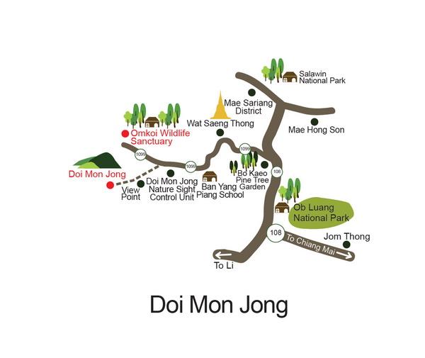 DISCOVER DOI MON JONG