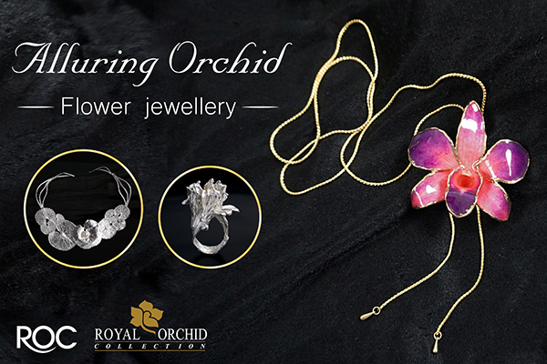 Alluring Orchid