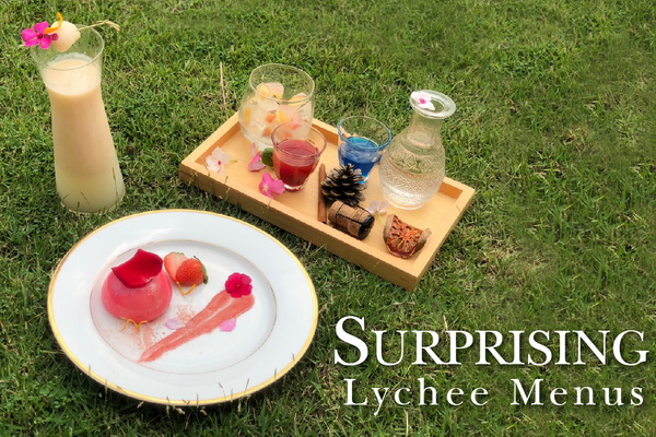 LYCHEE PARTY